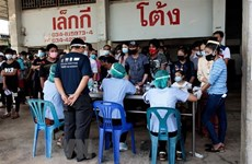 Vietnamese nationals must not return home illegally: Vietnamese embassy