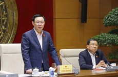 Parliamentary diplomacy helps raise Vietnam's stature in int'l arena: NA leader