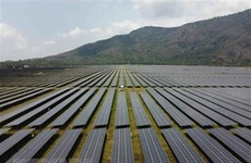 Vietnam could lead SE in renewable energy development: German newspaper