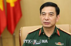 Vietnamese, Lao defence chiefs hold online talks