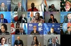 Vietnam supports free, fair election in Iraq: Ambassador