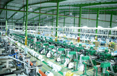 Paper, packaging firms see bright prospects ahead