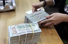Reference exchange rates up 10 VND