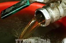 Honey exports face US anti-dumping probe