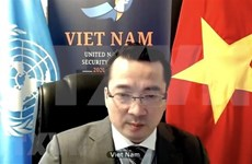 Vietnam calls Libyan parties to comply with ceasefire