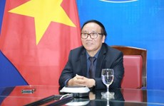 Webinar shares poems and memories of President Ho Chi Minh