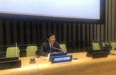 Vietnam calls for promoting political process in Libya