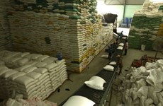 Opportunities for Vietnam to maintain stable rice export to Philippines