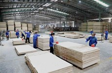Wood exports post 50.5-percent surge in four months