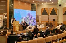 Vietnam seeks trade, investment opportunities in Africa via AFIC7
