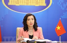 Vietnam acting to ensure workers' rights: Foreign ministry spokesperson