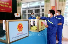 Election of supplementary deputies to be conducted within 15 days from May 23