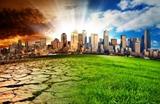 Green Climate Fund offers Vietnam 30.2 million USD to deal with climate change