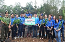 Report on youth action for climate change in Vietnam debuts