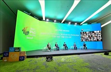 Vietnam affirms responsible contributions to climate change response