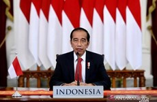 Indonesia to develop world's largest green industrial area