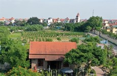 Flowers and ornamental plants are Hanoi's key agriculture products