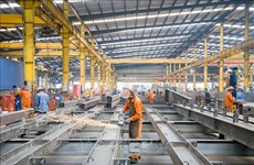 HCM City's industrial production up 7.4 percent in first five months