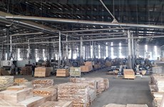 Vietnam striving to enhance transparency in wood sector