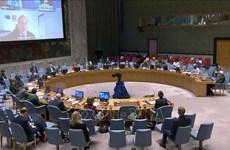 Vietnam proposes diversifying assistance  for gender equality initiatives of Sahel