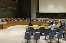 Vietnam backs non-proliferation of mass destruction weapons