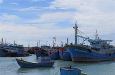 Organisations, individuals involved in IUU fishing to be punished strictly