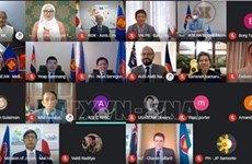 Vietnam attends EAS Ambassadors' virtual meeting