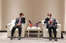 Foreign ministers satisfied with development trend in Vietnam-Cambodia ties