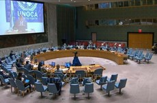 Vietnam calls for more dialogues to solve challenges in Central Africa