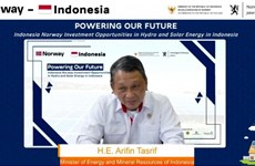 Indonesia outlines strategies for meeting carbon neutral target by 2060