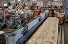 Wood exports hit record high despite COVID-19 in five months
