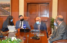 Egyptian localities wish for closer ties with Vietnam in port services, logistics