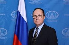 Russia treasures relations with Vietnam: Ambassador