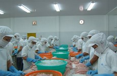 Tra fish exports expected to continue recovering