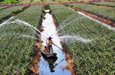 New policies drafted to encourage investment in agriculture
