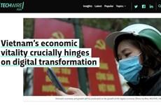 Vietnam's digital economy presents chances for investors, start-ups