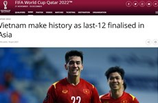 Vietnam makes biggest surprise at 2022 World Cup Asian qualifiers: FIFA