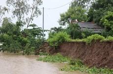 Erosion detected in Ca Mau's coastal embankment