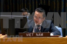 Vietnam supports ending of presence of foreign fighters, mercenaries in Libya