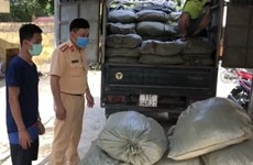 Illegal immigrants dected in Cao Bang, Long An provinces