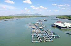 Ba Ria – Vung Tau protects its valuable marine resources