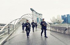 Terrorism threat to Singapore remains high: report