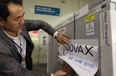 Over 11 billion VND earmarked for contribution to COVAX