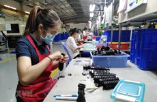 Dong Nai's six-month FDI attraction surpasses yearly target