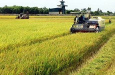Vietnam's supporting policies contribute to higher level of mechanisation in agriculture