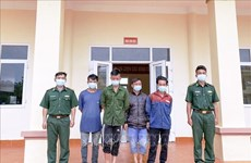 Four arrested for illegal border crossing