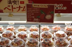 AEON event promotes Vietnamese products in Japan