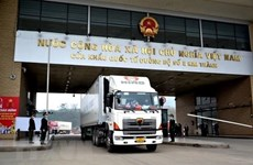Import-export value via Lao Cai int'l border gate surges neatly 42 pct in H1