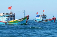 Ben Tre reports reduction in illegal fishing in foreign waters