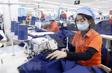 Tien Giang's industrial production edges up 1.13 percent in H1